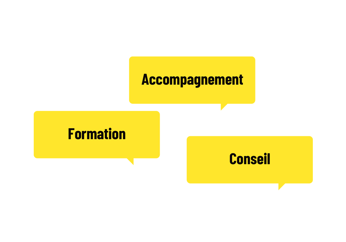 schema-expertise5
